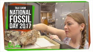 National Fossil Day: SciShow Talk Show