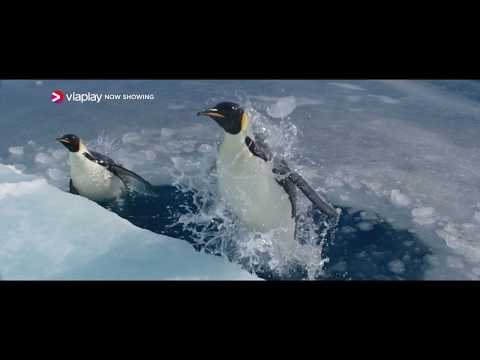 Viasat Film Premiere - Pingviinien matka 2 15.4.2018