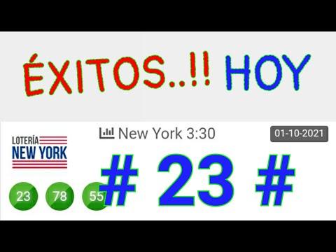 SORTEOS de HOY..! (( 23 )) Loteria NEW YORK/ BINGO HOY/ RESULTADO de las LOTERÍAS/ PALÉ y TRIPLETAS.