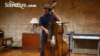 Building a Mix Using Peluso Microphones - Part 2: Stand Up Bass (22 47 SE, P-84)