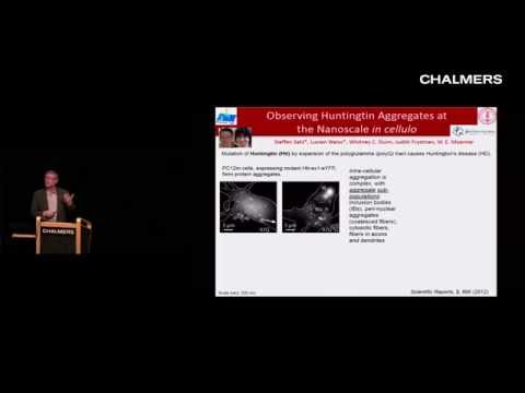 William E. Moerner: Single-Molecule Spectroscopy, Blinking, and Photocontrol