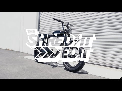 The Shred-it Edit: S2 Highlights, RX adventure, Madelyn Cline, and Shop update!!!
