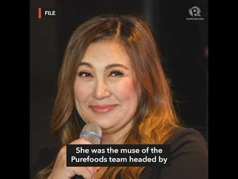 Sharon Cuneta ignores bashers as Magnolia muse in PBA