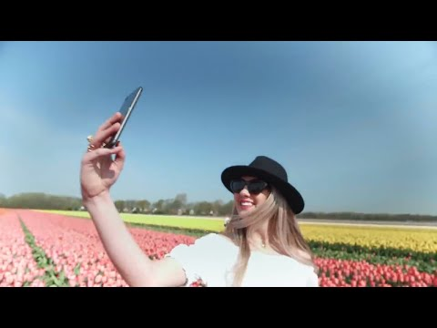 Better be sure your selfie is tulip-friendly!  photo