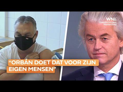 Wilders over beslissing van Hongaarse premier om Chinees vaccin te gebruiken: 'Zeer terecht'