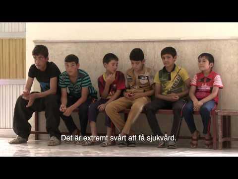 Irak: på flykt undan Islamiska staten