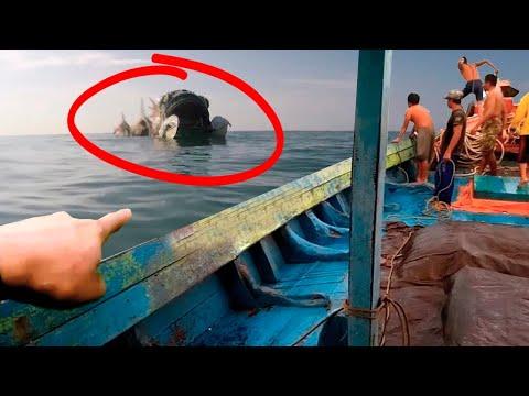 Когда Рыбаки Поняли, Что Они Увидели, Было Уже Слишком Поздно