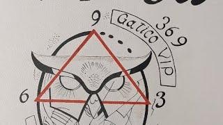 369 DE TESLA GATICO VIP#1. 01/08/2020