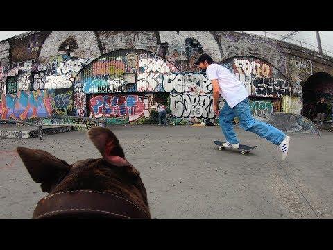 GoPro Skate: Follow Cam Dog