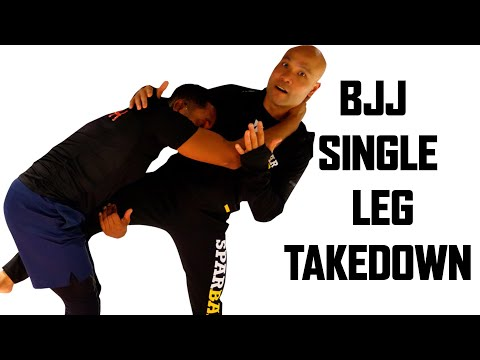 BJJ single leg takedown | Wing Chun Master Wong