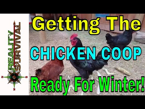 Getting My Backyard Chicken Coop Ready For Winter!