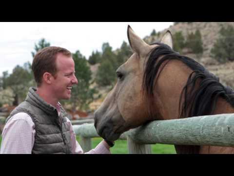 Coyote Rock Ranch Veterinary Scholarships