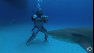Sir Lance-Shark-Lot | MythBusters