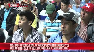 Nicaragua promoverá el comercio de productos agropecuarios – Nicaragua