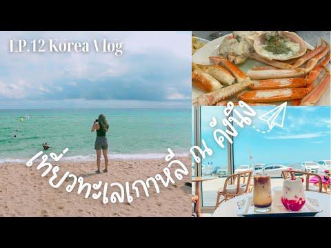 🇰🇷-Korea-vlog-EP12-:-ไปแตะทะเล