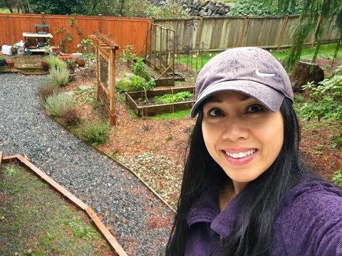 A Walk in the Garden PNW