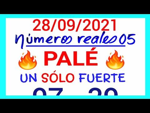 NÚMEROS PARA HOY 28/09/21 DE SEPTIEMBRE PARA TODAS LAS LOTERÍAS...!! Números reales 05 para hoy...!!