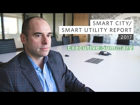 Smart City/Smart Utility: Executive Summary
