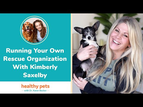 Running Your Own Rescue Organization With Kimberly Saxelby