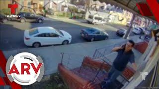 Inquilino airado empuja al dueño de una casa por las escaleras   Al Rojo Vivo   Telemundo