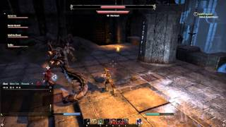 The Elder Scrolls Online  Snake Ladies Veteran Dungeon