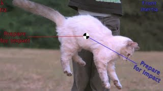Flipping Cat Maneuver on the Space Station? #askAstro (30 sec)