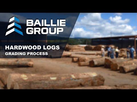 Hardwood Log Grading