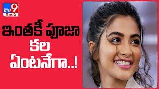 Pooja Hegde: అనుకున్న కలను సాధించానని చెబుతోన్న బుట్టబొమ్మ.. - TV9 - TV9