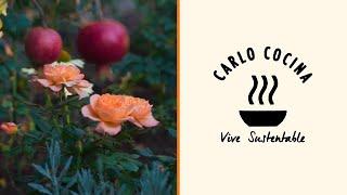 La huerta inesperada dentro de un jardín de rosas | Carlo Cocina