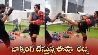 Actress Eesha Rebba Doing Boxing Workout At GYM | బాక్సింగ్ చేస్తున్న ఈషా రెబ్బ | IG Telugu - IGTELUGU
