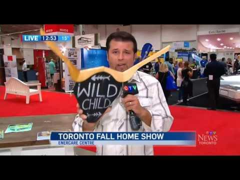 CTV News at Noon at the 2016 Toronto Fall Home Show clip 4