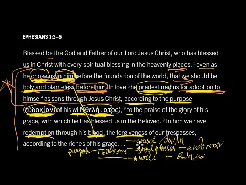 Ephesians 1:3–6 // Part 8 // Why Did God Choose Whom He Chose?