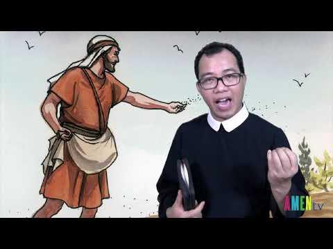 LỜI HẰNG SỐNG  Thứ Tư 24.07.2019: HẠT RƠI TRÊN ĐẤT TỐT - Linh mục Giuse Nguyễn Văn Toản, DCCT