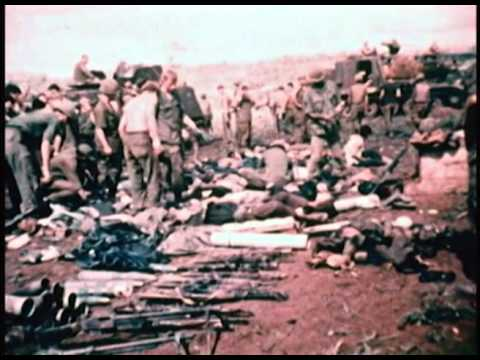 Vietnam: American Holocaust 2008 documentary movie play to watch stream online
