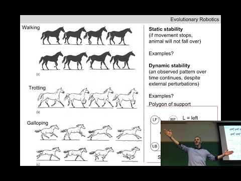 Evolutionary robotics Lecture 12: Bipedal locomotion (Recorded Feb 22, 2018)
