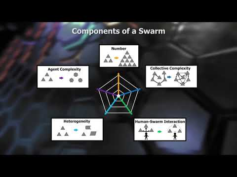 What Is a Swarm?
