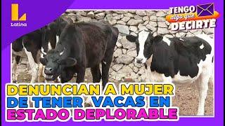 Vecinos acusan a mujer de tener a sus vacas en estado deplorable