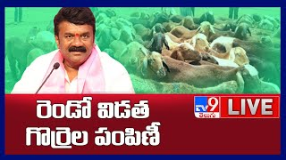 Talasani Srinivas Yadav LIVE    Sheep Distribution @ Jammikunta Market Yard - TV9 - TV9