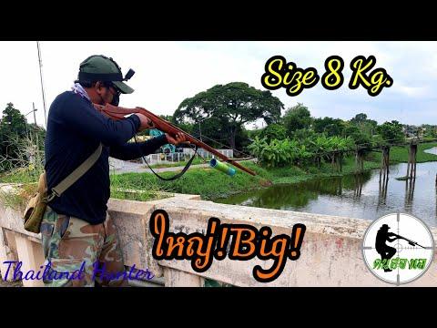 #SHOOT-FISH-ยิงปลาใหญ่-ล่องน้ำ