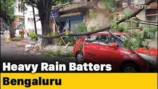 Bengaluru: Heavy Rain Uproots Electric Poles, Trees - NDTV