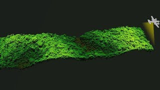 Amazon Canopy Comes to Life through Laser Data