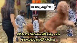 Actress Genelia And Her Kids Playing With Their Pet Dog | Rajshri Telugu - RAJSHRITELUGU