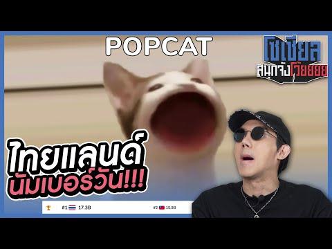 POPCAT-มาจากไหน!-ทำไมถึงเป็นไว