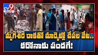 Telugu States : మృగశిర కార్తె వేళ చేపల మార్కెట్లు కిటకిట - TV9 - TV9