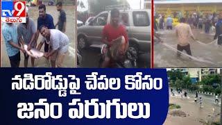 People catch fish on flooded roads || వరదలకు చేపలు రోడ్లపైకి కొట్టుకోస్తున్నాయి - TV9 - TV9