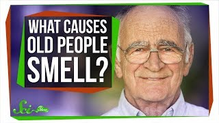What Causes 'Old People Smell'?