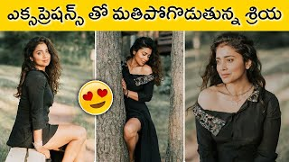 Shriya Saran Super H0T Dazzling Photoshoot   Actress Shriya   Rajshri Telugu - RAJSHRITELUGU