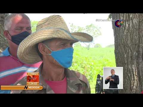 Cuba: Morales Ojeda valoró tareas de producción de alimentos en Camagüey