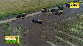 ABC Rural Programa 13: Producción nacional de arroz