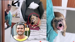 Bigg Boss Telugu 3 Title Winner Rahul Sipligunj Fun With His Dog | TFPC - TFPC
